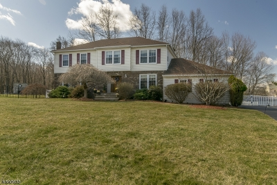 Roxbury Twp. Single Family Home For Sale: 29 Parkview Dr