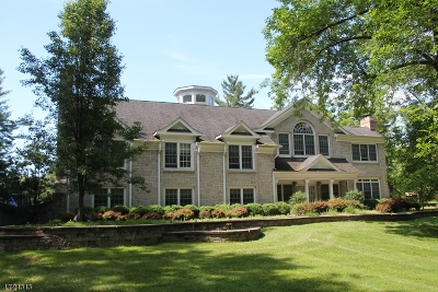 Franklin Twp. Single Family Home For Sale: 156 River Rd