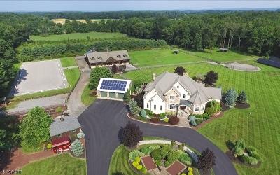 Franklin Twp. Single Family Home For Sale: 240 Oak Grove Rd