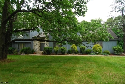 Randolph Twp. Single Family Home For Sale: 6 Castle Ct