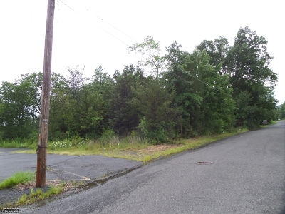 Hillsborough Twp. Residential Lots & Land For Sale: Park Ave