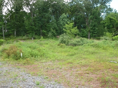 Montgomery Twp. Residential Lots & Land For Sale: 164 Spring Hill Rd