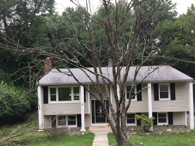 Single Family Home For Sale: 17 Highland Ave