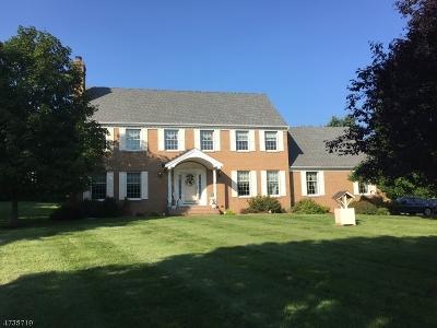 Alexandria Twp. Single Family Home For Sale: 1 Homestead Farm Rd