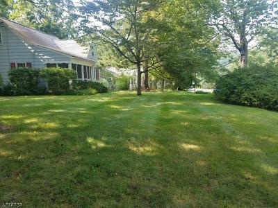 Mendham Boro, Mendham Twp. Single Family Home For Sale: 54 Mountain Ave