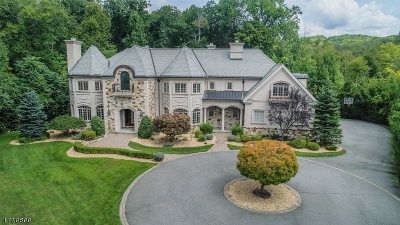 Montville Twp. Single Family Home For Sale: 12 Pond View