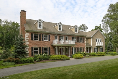 Mendham Boro, Mendham Twp. Single Family Home For Sale: 6 Combs Hollow Rd