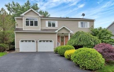 Cranford Twp. Single Family Home For Sale: 28 Fairfield Ave