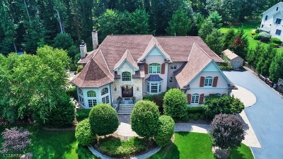 Scotch Plains Twp. Single Family Home For Sale: 25 Pheasant Ln