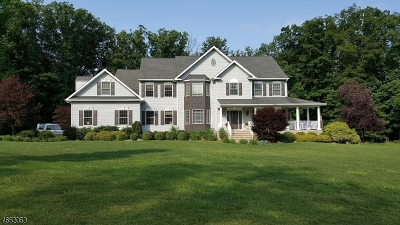 Mount Olive Twp. Single Family Home For Sale: 3 Seneca Ct