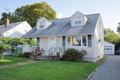 Morris Twp. Single Family Home For Sale: 13 Kennedy Rd