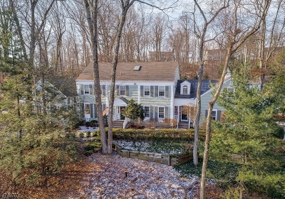 Bernards Twp. Single Family Home For Sale: 154 Deer Ridge Rd