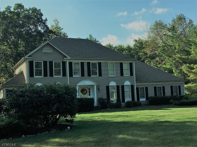 Randolph Twp. Single Family Home For Sale: 20 Cromwell Dr