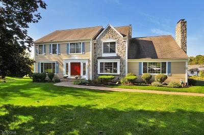 Bridgewater Twp. Single Family Home For Sale: 19 Davis Ct
