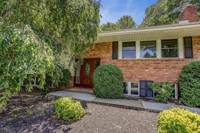 Mendham Boro, Mendham Twp. Single Family Home For Sale: 12 Old Brookside Rd