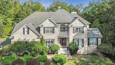 Sparta Twp. Single Family Home For Sale: 4 Deanna Ter