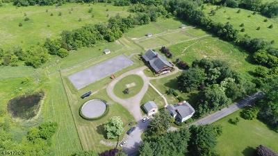 Readington Twp. Single Family Home For Sale: 152 Rockafellows Mill Rd