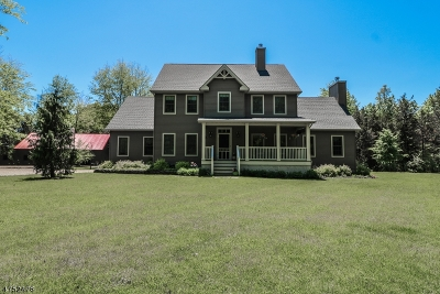 Kingwood Twp. Single Family Home For Sale: 43 Fairview Rd