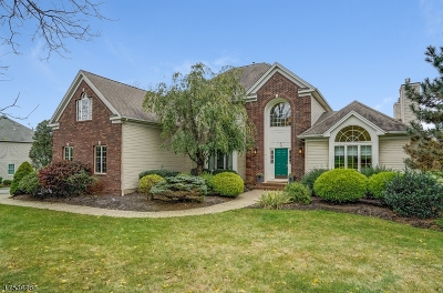 Randolph Twp. Single Family Home For Sale: 16 Quail Run