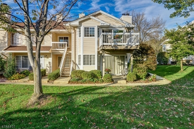 Bedminster Twp. Condo/Townhouse For Sale: 63 Foxwood Ct