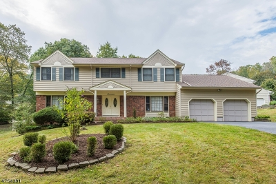 Morris Twp. Single Family Home For Sale: 17 Rambling Woods Dr