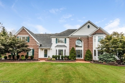 Raritan Twp. Single Family Home For Sale: 3 Regal Way
