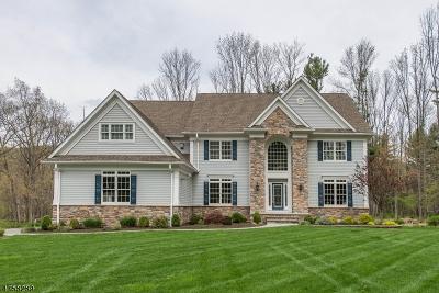 Roxbury Twp. Single Family Home For Sale: 288 Emmans Rd