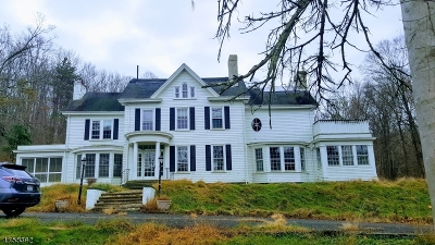 Morris Twp. Single Family Home For Sale: 284 Mendham Rd