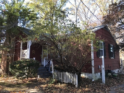 Piscataway Twp. Single Family Home For Sale: 258 Grandview Ave