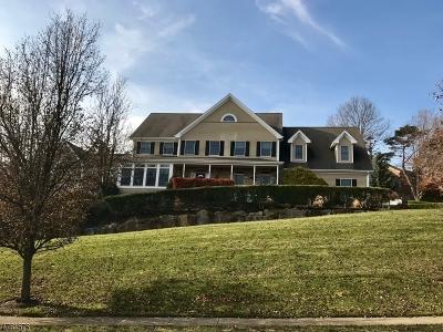 Morris Twp. Single Family Home For Sale: 17 Spencer Dr