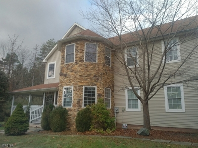 Alexandria Twp. Single Family Home For Sale: 390 Woolf Road