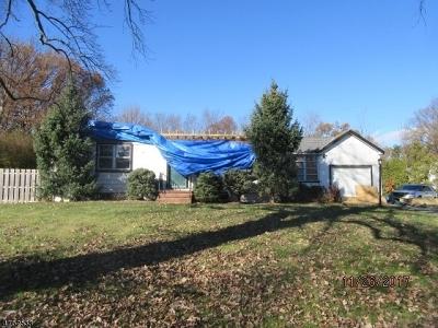 Hanover Single Family Home For Sale: 256 Whippany Rd