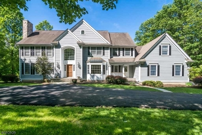 Chester Twp. NJ Single Family Home For Sale: $930,000