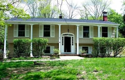 Randolph Twp. Single Family Home For Sale: 172 Park Ave