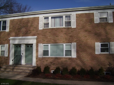 Edison Twp. Condo/Townhouse For Sale: 187 Evergreen Rd #4B
