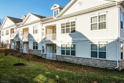 Hanover Condo/Townhouse For Sale: 202 Stone Creek Ct