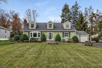 Summit Single Family Home For Sale: 112 Essex Rd