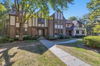 Bernards Twp. Single Family Home For Sale: 247 Douglas Rd