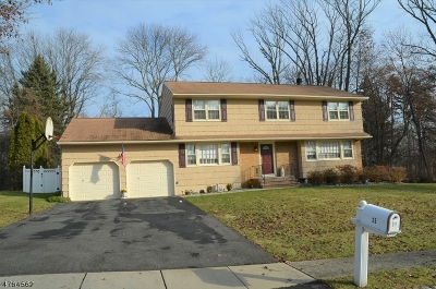 Parsippany-Troy Hills Twp. Single Family Home For Sale: 25 Robert St