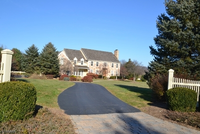 Tewksbury Twp. Single Family Home For Sale: 3 Orchard Ln