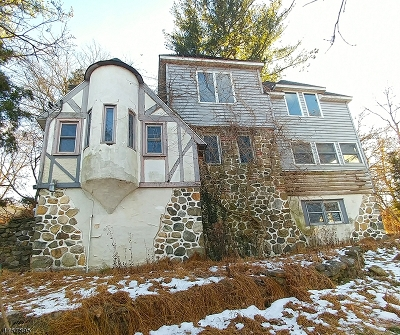 Sparta Twp. Single Family Home For Sale: 217 E Shore Trl