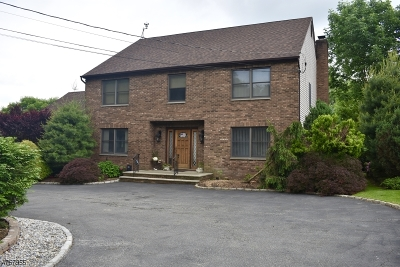 East Hanover Twp. Single Family Home For Sale: 387 River Rd