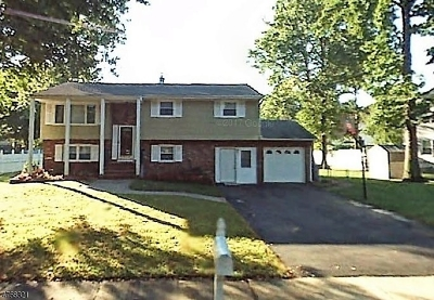 Piscataway Twp. Single Family Home For Sale: 262 Davis Ave