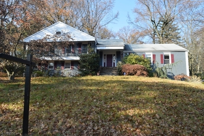 South Orange Village Twp. Single Family Home For Sale: 229 Wyoming Ave