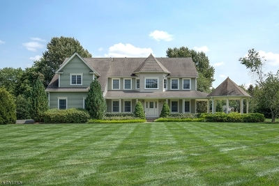 Lebanon Twp. Single Family Home For Sale: 464 Route 513
