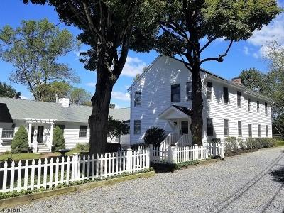 Mendham Boro, Mendham Twp. Single Family Home For Sale: 77 Roxiticus Rd