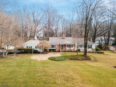 Bernardsville Boro Single Family Home For Sale: 151 Mendham Rd