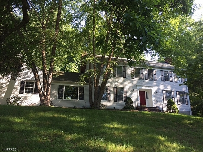 Chester Single Family Home For Sale: 11 South Rd