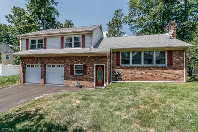 Cranford Twp. Single Family Home For Sale: 389 Lincoln Ave E