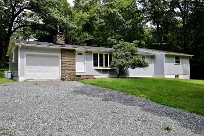 Hunterdon County Single Family Home For Sale: 567 E Hill Rd